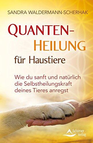 Quantenheilung für Haustiere: Wie du sanft und natürlich die Selbstheilungskraft deines Tieres anregst