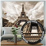 Poster Torre Eiffel Immagine decorazione per pareti Francia Capitale Parigi Monumenti Emblemi Eiffel Tower Torre panoramica - Poster da parete Fotomurales Decorazione da parete GREAT ART (140 x 100cm)