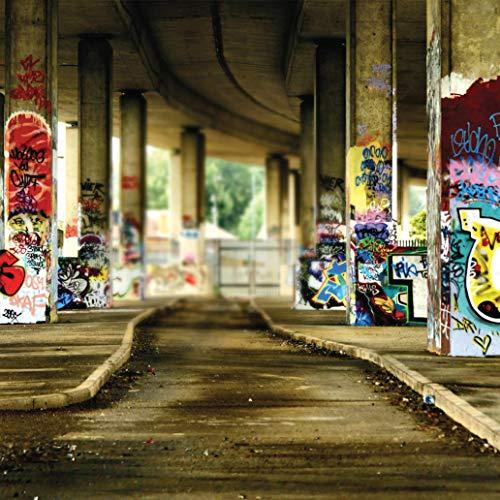 JoneAJ 10x10ft Graffiti Korridor Vinyl Hintergrund Computer gedruckt szenische Fotografie Hintergrund (Rosa Geburtstags-dekorationen Heiße Und Schwarze)