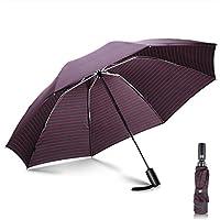 Paraguas plegables y compacto, Leebotree Paraguas de Viaje Plegable Clásico Sistema automático de apertura Tela impermeable y muy resistente 210T. Fácil transporte.