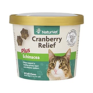 NaturVet Cranberry Relief & Echinacea Cat Soft Chew Cup Healthy Urinary 60ct NaturVet Cranberry Relief & Echinacea Cat Soft Chew Cup Healthy Urinary 60ct 51KzmUjF9OL