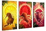 Gallery of Innovative Art - Kids Selection - Kiwi Fruitflies Collage - 120x80cm - XXL Leinwand-Druck in deutscher Marken-Qualität - Leinwand-Bilder auf Holz-Keilrahmen als moderne Wohnzimmer-Deko