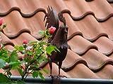 Konstantin, der Hahn Dachvogel Kupfer Look Vogel f. Zaun, Geländer, Dachrinne