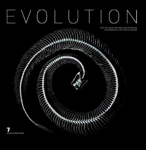 Evolution by Jean-Baptiste De Panafieu (2007-11-15)