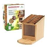 Gardigo Mangeoire pour écureuil avec toit ouvrant | maison, bar, distributeur de nourriture en bois pour plusieurs animaux | facile à remplir et à nettoyer