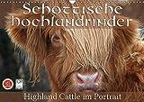Schottische Hochlandrinder - Highland Cattle im Portrait (Wandkalender 2017 DIN A3 quer): Schottische Hochandrinder, die Rinderrasse die auf der ... (Monatskalender, 14 Seiten ) (CALVENDO Tiere)