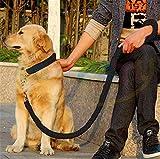 Robuste Hundeleine von SeaNpem, verstellbar, mit Martingal-Hundehalsband, geflochten, Zugklemme aus Metall, Verdrehsicherung, Geh- und Trainingsleine für Ihr Haustier, solide hergestellt, für mittelgroße Rassen