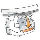 Passform Lackschutzfolie als Selbstklebender Ladekantenschutz (Autofolie und Schutzfolie) transparent 150µm für Modell Siehe Beschreibung 100% zugeschnitten robust passend fertig