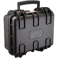 AmazonBasics Mallette rigide pour appareil photo - Petite