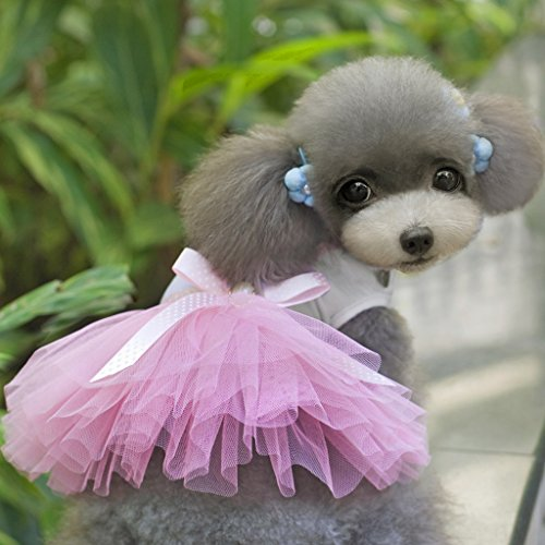 Kostüm Pudel Muster Rock - FLAMEER Mode Süße Hündchen Bownot Mit Herz Muster Prinzessin Rock Haustier Hund Spitze Kuchen Leibchen Tutu Kleid (lila, Rosa) - Rosa XL