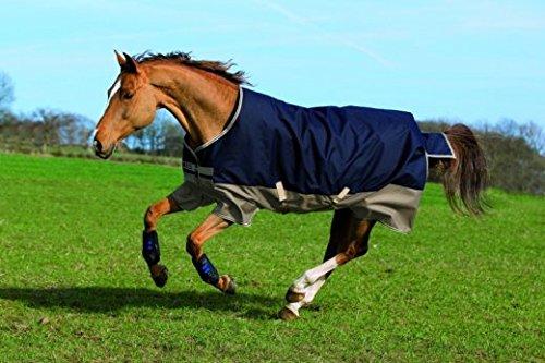 amigo-mio-medium-horse-600d-200g-turnout-rug-navy-tan-6ft6