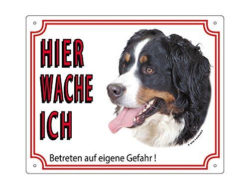 (Warntafel Berner Sennenhund gelb 12 x 3,5 cm)