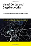 #7: Visual Cortex and Deep Networks - Learning Invariant Representations (Computational Neuroscience Series)