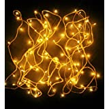 Riflection Yellow Colored Decorative RICE FESTIVAL DECORATION Lights, 7 Metre Long