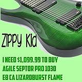 I Need $1,099.99 To Buy Agile Septor Pro 1030 EB CA Lizardburst Flame