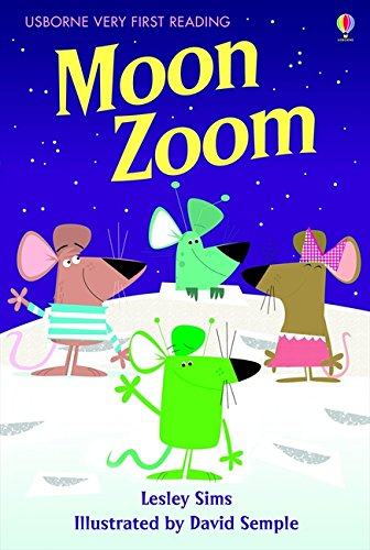 Moon zoom (1.0 Very First Reading)