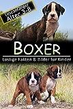 Boxer: Lustige Fakten & Bilder für Kinder, Leseanfänger Alter 3-8