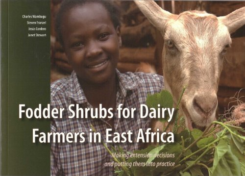 fodder-shrubs-for-dairy-farmers-in-east-africa-making-extension-decisions-and-putting-them-into-prac