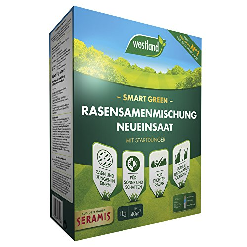 Westland Smart Green Rasensamenmischung Neueinsaat, Mit Startdünger, Blaugrün, 1 kg, 40 m²