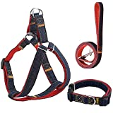 Tuipong Cute Dog Harness Blei-Set, robuste solide Denim-Stoff Hundeleine Harness, einstellbar stilvolle Harness Fancy Lead Harness für kleine und mittlere Hunde, wie Small Samo, Small HUSKY (Rot, L)