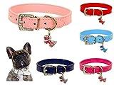 Lushpetz Original Design Hundehalsband aus Leder mit freiem, graduiertem Hundeanhänger XSmall Small Medium Große Größen (Mittel, Hell-Pink)
