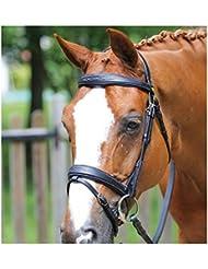 Bridon Auteuil protanner Habana caballo