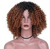 RY @ Hair Afro Curly Gelockt Lang Kunsthaar Perücken für Frauen hohe Temperatur Schwarz Haar Faser keine Schleife