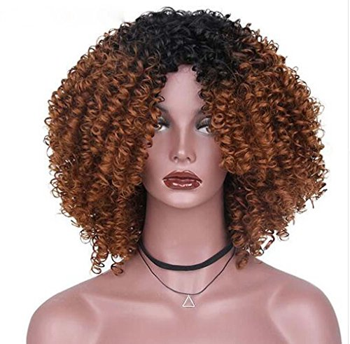 RY @ Hair Afro Curly Gelockt Lang Kunsthaar Perücken für Frauen hohe Temperatur Schwarz Haar Faser keine Schleife -