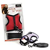 Small-n-Furry Walk-n-Vest-n-Leash: Comfort harness & safety leash combination with bell- A great way to exercise you small furry friends (Medium)