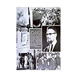 POLITICAL CIVIL RIGHTS AFRICAN AMERICAN MALCOLM X ISLAM FRAMED PRINT B12X10063