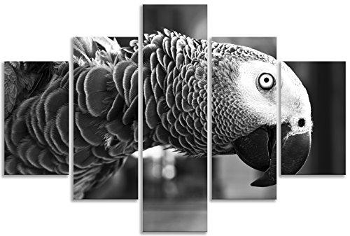 Parrot ojo pájaro en blanco y negro lienzo Animal Kingdom para sala de estar cuarto de baño decoración del hogar imagen Multi Panel lienzo cinco piezas enmarcado de impresión de Lienzo arte enmarcado