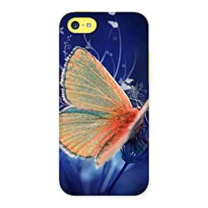 Yellowish Butterfly Back Case Cover for iPhone 5C