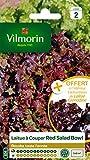Vilmorin 3609842 Pack de Graines Laitue à Couper Salade Bol Rouge + Echantillon Laitue à Couper...