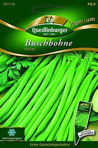 Bohnen Busch- Ferrari - Phaseolus vulgaris L. var. nanus QLB Premium Saatgut Bohnen