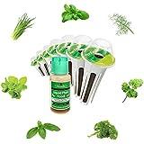 Pack de graines fines herbes pour l' aerogarden - 068-071-005