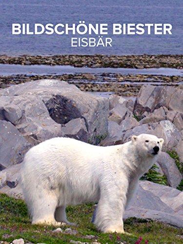 Bildschöne Biester Eisbär