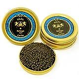 Beluga Caviar Premier (Amur Beluga Stör) 50g TOPSELLER