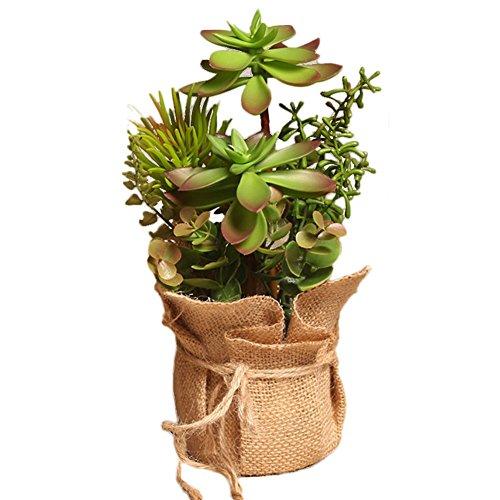Outflower Suculentas de simulación Simulación de Plantas estilo pastoral pequeño bonsai pote cáñamo plantas de interior salón decoración de las mesas Simulación de la decoración vegetal,Rojo+Verde,25*14cm