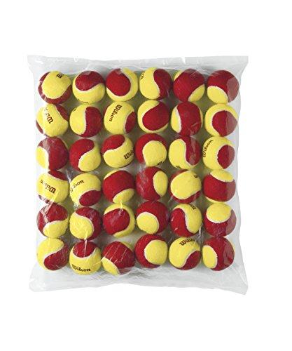 Preisvergleich Produktbild Wilson Tennisbälle,  Starter Red,  36er Pack,  Gelb / Rot,  Für Kinder,  WRT13700B