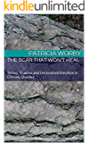 The Scar that Won't Heal: Stress, Trauma and Unresolved Emotion in Chronic Disease (The Mindbody Solution Book 2)