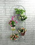 XIAOLIN- im europäischen Stil Eisen Blumentopf Rack Wandbehang Aussetzung Formel Balkon Blumen-Racks Innen- Wohnzimmer Fensterbank Blumentopf Rack -Blumen-Finishing-Rahmen (Farbe : 2)