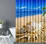 Strand-Conch-Baum-blauer Himmel-Duschvorhang-Zwischenlage Mehltau-beständiges wasserdichtes Bad-Vorhang-Polyester-3D Effekt-Seethema-Duschen-Vorhänge oder Zwischenlagen-Stall, 60 x72 Zoll, blaues kakifarbiges