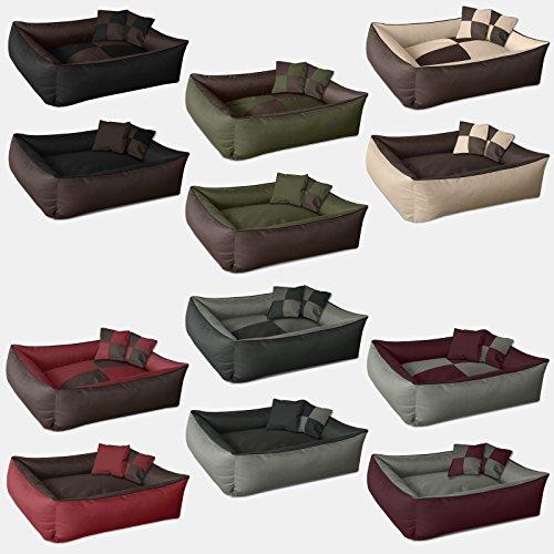 Cucce divani sdraio e brandine per chihuahua e cani di piccola taglia - Cane pipi letto ...