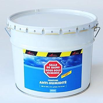 Peinture Anti Humidité Cave Soussol Salle De Bain Sdb Mur Humide - Peinture anti moisissure pour salle de bain