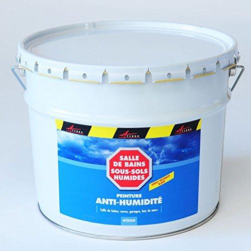 Arcascreen - Peinture Anti Humidité Cave Mur Salle De Bain Sous