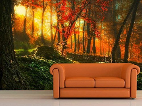 mural-wall-art-photo-decor-news-from-my-garden-large-startonight-8-feet-4-inch-by-12-feet