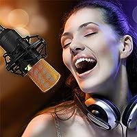 Beautyrain 1 PC Micrófono de condensador de estudio de grabación Micrófono de computadora profesional Recording Studio/Room Room Equipamiento especial