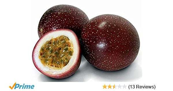national gardens purple passion fruit seeds pack of 10 amazon in rh amazon in