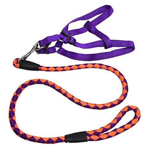 Reflektierende Nylon Hundeleine mit Brustgeschirr Laufgeschirre Set - Handgearbeitete Runde Führleine + Komfortables Hundegeschirr Lila Orange