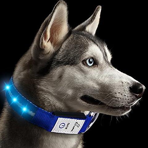 Collier de chien à LED rechargeable, JuzPetz Lumineux Collier visible réfléchissant [Résistant à l'eau   3 modes de lueur] Clignotant Collier de sécurité dans la Nuit pour animaux de compagnie Réglable Lumière Brillant avec câble de recharge USB - Moyen [34-47 cm] - Bleu